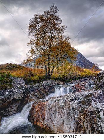 Buachialle Etive Mor, Glen Etive, Scotland, UK