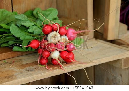 Horizontal image with bunches of radishes set on shelf of wood crate at local farmers market.