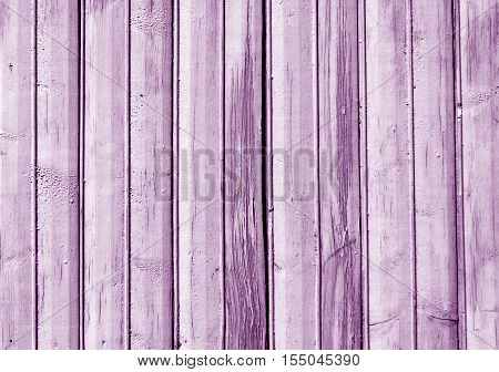 Magenta Color Old Wooden Fence Texture.