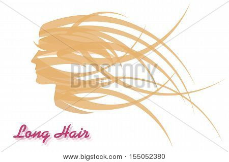 Vector abstract Illustration - long womens hair made of narrow and transparent curved strips. Concept for hairdressers and beauty lady salons