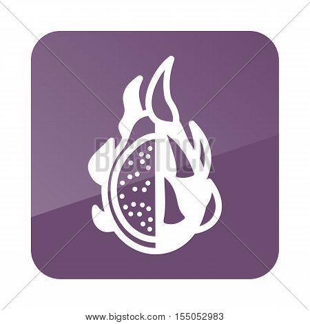 Pitaya outline icon. Tropical dragon fruit. Vector illustration eps 10