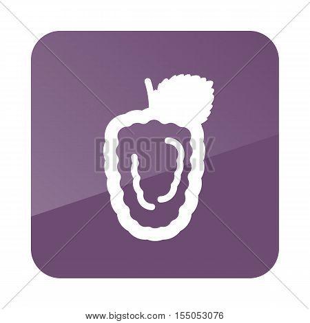 Blackberry bramble outline icon. Berry fruit. Vector illustration eps 10