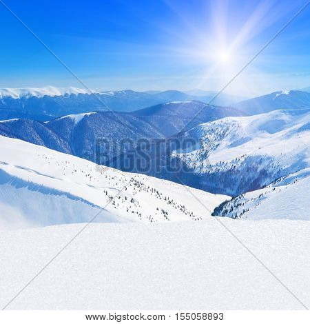 Winter snowy mountains peaks with coniferous forest natural landscape against blue sunny sky background - skiing health resort downhills - square photography