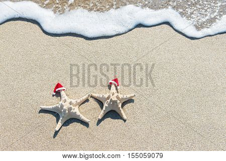 Sea-stars couple in red santa hats sunbathing at ocean sandy beach. Holiday concept for New Year's Day and Christmas greetings.