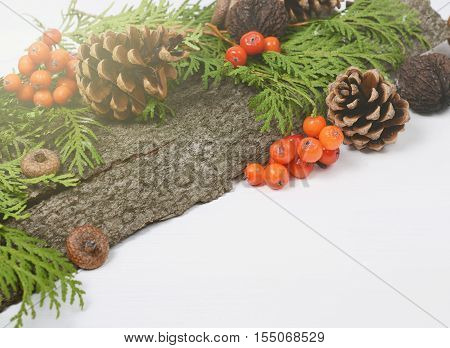 Christmas holidays composition with cones, rowan berries, green thuja branches. Winter seasonal background with space for text