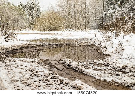 Puddle on a snowy country road in winter with sunshine on trees