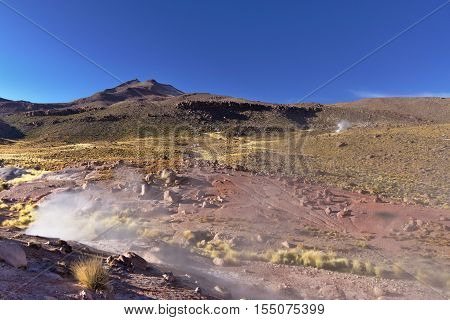 Geysers Expelling Vapor In The Early Morning