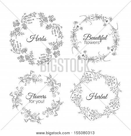 Herbs Illustration. Floral frames. Calendula, Cotton, Bindweed, Shaffran, Flax, Echinacea. Handdrawn Health and Nature collection. Vector Ayurvedic Set. Holistic Medicine. Healing plants.