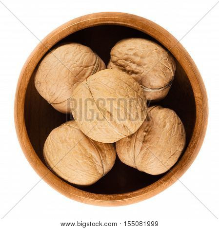 Whole walnuts with shells in a wooden bowl on white background. Brown dried nuts of common walnuts, Juglans regia. Edible, organic and vegan food. Isolated macro photo close up from above.