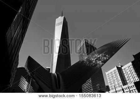 Oculus In The World Trade Center Transportation Hub