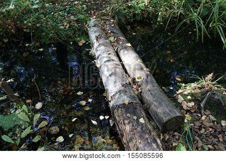 bridge, ditch, transition, nature, wooden, blue, green, grass, river