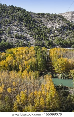 Passage along the river Jucar during autumn take in Alcala of the Jucar Albacete province Spain