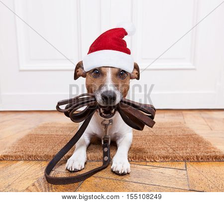 Dog Leather Leash For Christmas