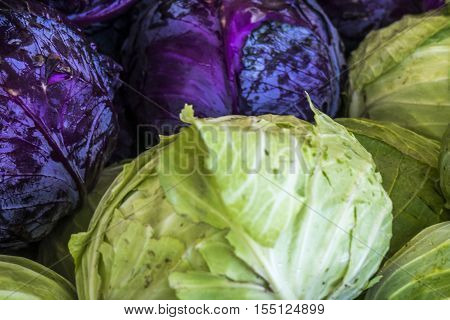 Wilson Park Farmers Market Torrance California. Hundreds of red and green cabbage.