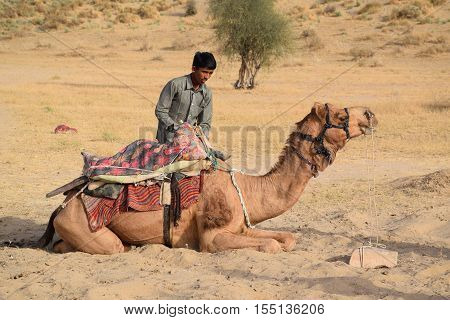 JAISALMER, RAJASTHAN, INDIA - FEBRUARY 12, 2016 - Unidentified indian guy with his camel in Thar desert