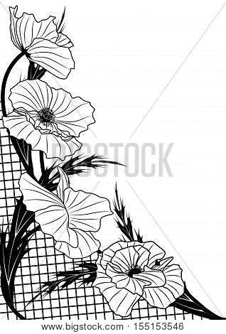 vector frame with poppy and lattice in black and white color