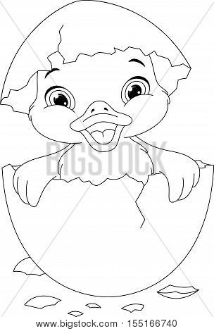 Duckling Hatched From Eggs Coloring Page EPS 8