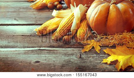 Pumpkin, Squash. Happy Thanksgiving Day Background. Autumn Thanksgiving Pumpkins over wooden background, still-life. Beautiful Holiday Autumn festival concept scene Fall, Harvest.