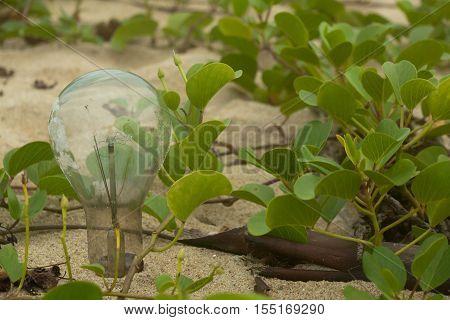 Light bulb on the beach in Vietnam