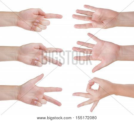 Counting human hands isolated on white background