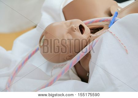 refresher training to assist childbirth newborn with medical baby dummy in emergency the midwife of doctor or physician