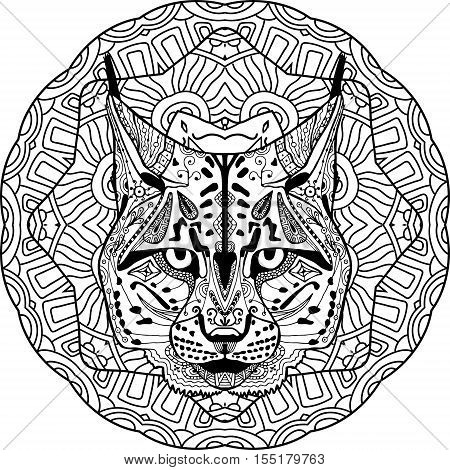 Strong lynx, bobcat is drawn by hand with ink, with ethnic patterns. Zendoodle, zenart. Circular mandala tribal patterns. Coloring book for adults. Coloring antistress. Element for your design.