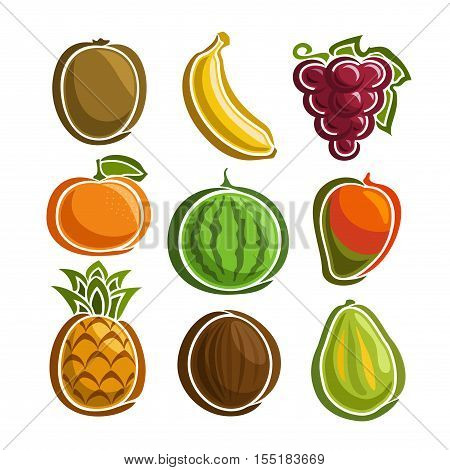 Vector Set colorful Fruits icons: kiwi, banana, grape, mandarin, watermelon, mango, pineapple, coconut, papaya; collection set of abstract simple fruit logo or icon, isolated on white background.