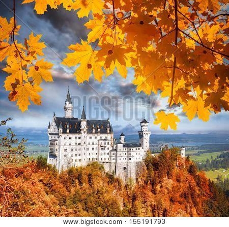 Neuschwanstein Castle With Autumn Leaves In Bavaria, Germany