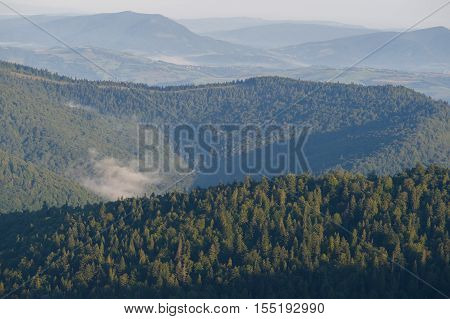 Sunrise in misty mountains. Morning in misty Gorce mountains,  view from Gorc summit on Gorce and Beskid Sadecki (south east)