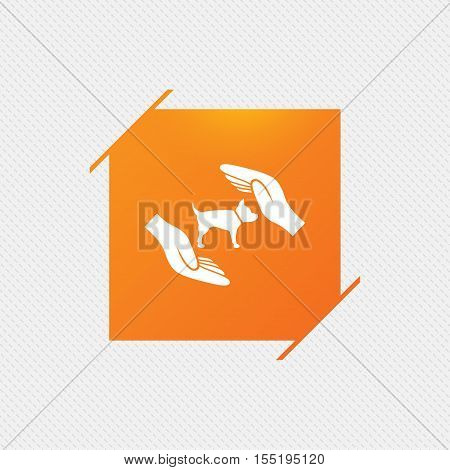Protection of animals pets sign icon. Hands protect dog symbol. Shelter for dogs. Animals insurance. Orange square label on pattern. Vector