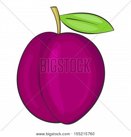 Plum icon. Cartoon illustration of plum vector icon for web