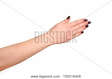 Female hand showing direction isolated on white background
