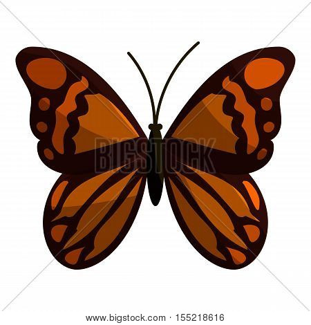 Brown butterfly icon. Cartoon illustration of brown butterfly vector icon for web