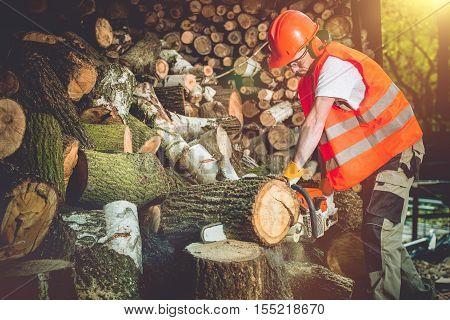 Firewood Logs Preparing. Cutting Wood Logs For Hard Winter Season.