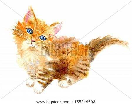 Postcard with ginger kitten.Red cat greeting card.Watercolor hand drawn illustration.White background.