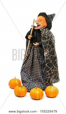 witch on Halloween on a white background