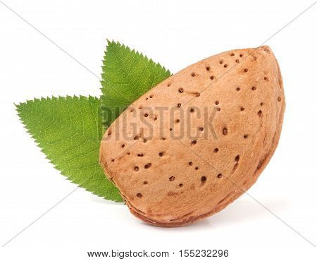 almonds unpeeled with leaf isolated on white background.