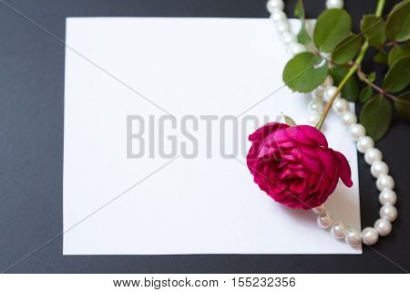 Beautiful Red Rose With Pearls On Blank White Sheet Paper