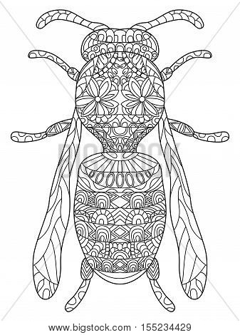 Wasp Coloring pet adult vector illustration. Anti-stress coloring for adults bee. Zentangle style. Black and white insect