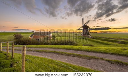 Dutch Wooden Windmill In Grassy Dairy Landscape