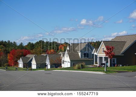 houses in modern residential community with autumn colorful trees