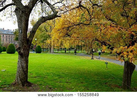 Fall over Public Garden in Boston Common, Boston, MA