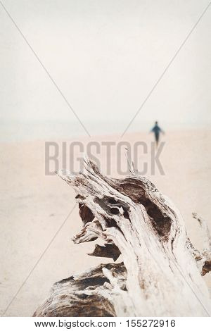 Textured image of a driftwood log with a solitary person in the background