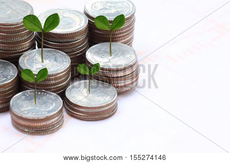 silver coin stack and treetop in business growth concept on paper background.