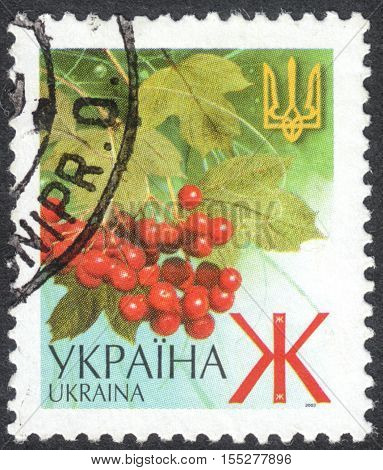 MOSCOW RUSSIA - CIRCA OCTOBER 2016: a post stamp printed in UKRAINE shows ashberry and a trident the Definitive Issue circa 2003