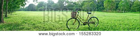 Panorama View Yellow Bicycle On Green Grass