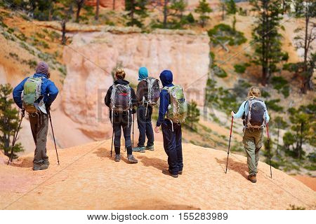 Group Of Hikers Admiring A View Of Red Sandstone Hoodoos In Bryce Canyon National Park
