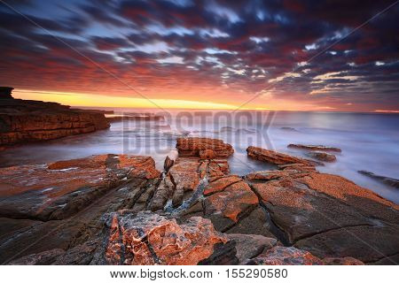 Stunning Sunrise At Maroubra