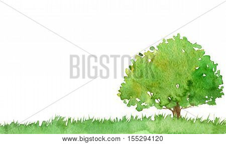 watercolor landscape with tree and grass, green foliage, abstract nature background, forest template, hand drawn illustration