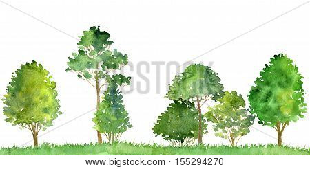 watercolor landscape with deciduous trees, pine, bushes and grass, abstract nature background, forest template, green foliage and plants, hand drawn illustration